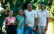 Agricultura familiar transforma 'criadouro de calangos' em oásis do arroz