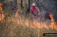 Tangará: Em 2018, queimadas crescem 33% em áreas de vegetação entre junho e agosto