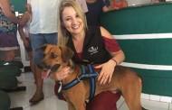 Cão é adotado após ficar quatro meses na frente de hospital à espera de dono que morreu