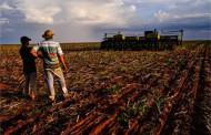 Produtores de MT irão a Brasília para barrar vetos do Funrural; multas podem dificultar crédito