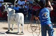 Tangará: Cavalgada e Gincana de Férias será realizada em julho