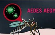 98 municípios em situação de alerta ou risco para dengue, zika e chikungunya