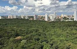 Parques Estaduais da Capital irão receber pontos de conexão Wi-Fi