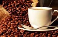 Estoque privado de café chega a quase 10 milhões de sacas na última safra