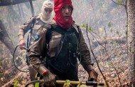 Mato Grosso busca arrecadar R$ 35 milhões para combater incêndios florestais na Amazônia