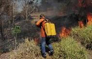 MT tem mais de 14 mil focos de incêndio entre janeiro e setembro, segundo Inpe