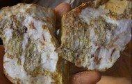 Pedras com fagulhas de ouro, vistas no garimpo ilegal de Aripuanã, impressionam