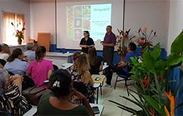 Cultivo de flores tropicais é oportunidade de negócio para agricultura familiar