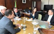 Indea discute agenda sobre defesa vegetal com ministro da Agricultura