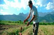 Inscrição no Cadastro Ambiental Rural deve ser feita até dezembro