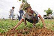 Sinop:Prefeitura executa ações de plano de recuperação de áreas degradadas no aeroporto