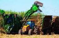 Atvos investe em canaviais para aumentar produção