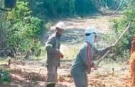Programa Luz Para Todos vai beneficiar 75 famílias em 16 aldeias indígenas em Barra do Bugres