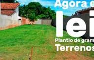 Programa Cidade Verde; obrigatoriedade de plantio de grama nos lotes baldios já está valendo