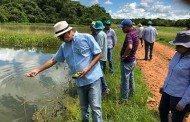 Minicurso de piscicultura discute construção de viveiros e produção de pescado em MT
