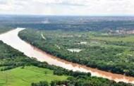 MPF contesta lei que autoriza desmatamento