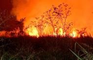 Com mais de 5 mil focos de incêndio no ano, MT começa período proibitivo das queimadas
