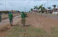 Obras realiza plantio de gramas e segue com trabalhos na Gleba