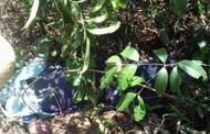 Corpo de homem é encontrado às margens do Sepotuba com um saco na cabeça