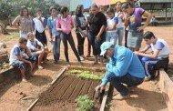 Técnico da Empaer auxilia alunos na construção de horta em escola