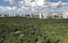 Wi-Fi grátis em parques de Cuiabá começa a operar até o final de junho, diz governo